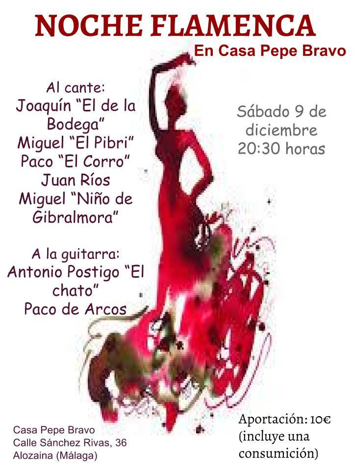 Noche flamenca 20171209 (1) (1)